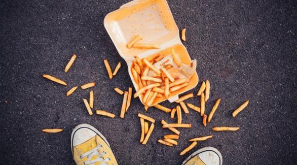 اخبار الامارات العاجلة 0201609131234448 لماذا لا يجب التقاط الطعام بعد وقوعه على الأرض؟ أخبار الصحة  الصحة