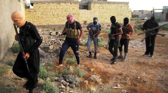 اخبار الامارات العاجلة 0201609170203728 مصر: السجن 15 عاماً لسائق انضم لداعش أخبار عربية و عالمية