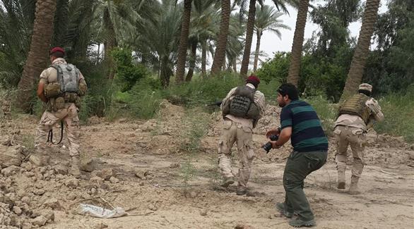 الإفتاء المصرية: داعش يستغل الزراعة لزيادة أرباحه بعد تراجع القطاع النفطي