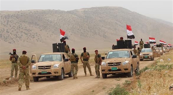 مصر تؤكد تضامنها مع العراق مع بدء معركة تحرير الموصل