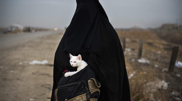 اخبار الامارات العاجلة 0201611110522421 سوريون يحمون الحيوانات المنسية في الحرب السورية أخبار عربية و عالمية