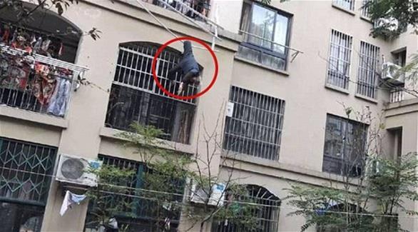 بالصور: حبل غسيل ينقذ تسعينياً سقط من شرفة منزله