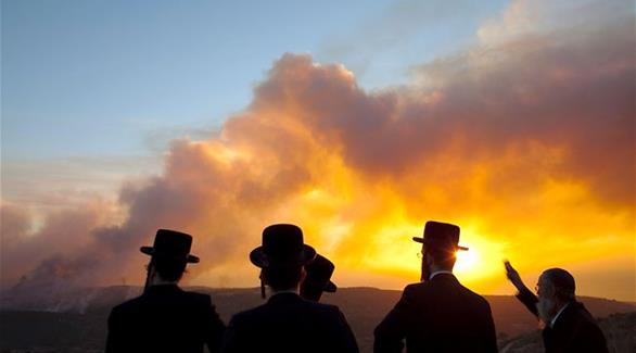 اخبار الامارات العاجلة 0201611260115754 داعية سلفي: الشماتة في حرائق إسرائيل حرام أخبار عربية و عالمية