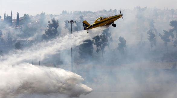 اخبار الامارات العاجلة 0201611280328297 خبراء: غابات حيفا بحاجة لـ 30 سنة للتعافي من الحريق الكبير أخبار عربية و عالمية