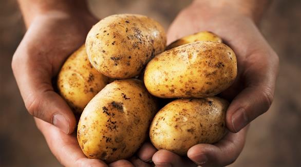 السعرات الحرارية في البطاطا حسب طريقة الطهي