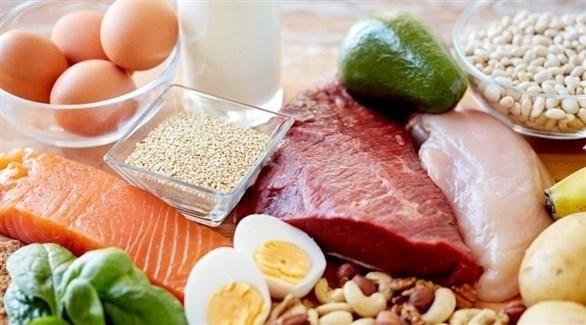 تنويع مصادر البروتين الغذائية (أرشيفية)