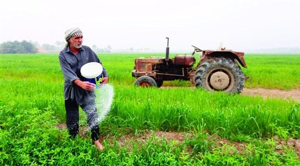 مزارع عراقي يرش السماد (أرشيف)