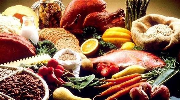 النظام الغذائي الشمالي