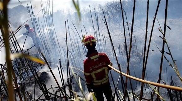 رجال إطفاء يكافحون الحريق في البرتغال (رويترز)