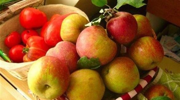 مصادر البكتين.. التفاح والطماطم