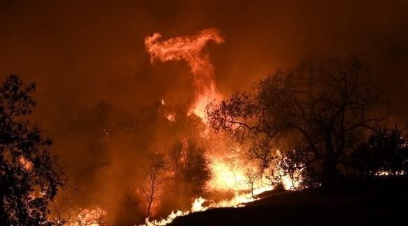 حرائق الغابات في كاليفورنيا (أ ف ب)