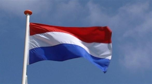 هولندا (أرشيف)