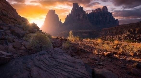 مشهد من وادي الديسة في السعودية (أرشيف)