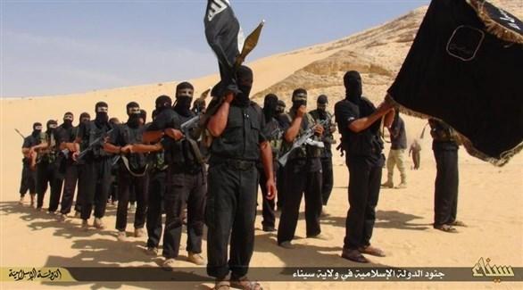عناصر من داعش في سيناء (أرشيف)