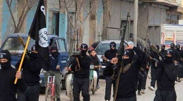 داعش الإرهابي (أرشيف)
