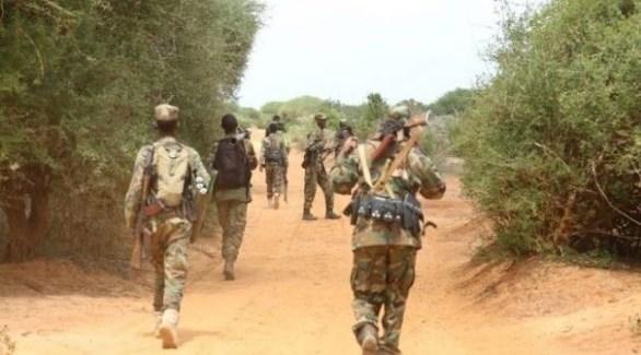 قوة مسلحة من الجيش الصومالي تمشط مناطق في إقليم جوبا (أرشيف)