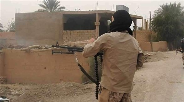 إرهابي من تنظيم داعش خلال اشباكات مع قوات سوريا الديمقراطية (أرشيف)