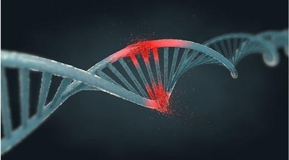 شكل تعبيري للشفرة الوراثية للسرطان