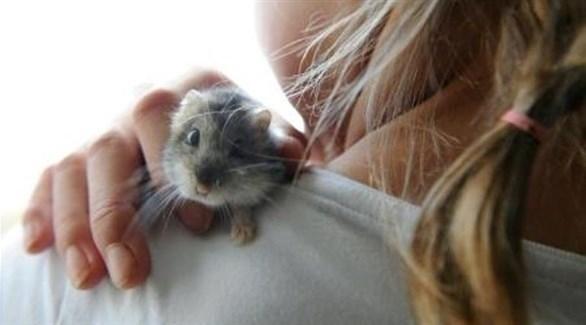 فتاة تحمل فأراً على كتفها (أرشيف)