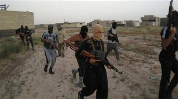مصادر لـ24:  دواعش سيناء  سلموا أنفسهم للأجهزة الأمنية والخلافات تشتعل على منصب الزعيم
