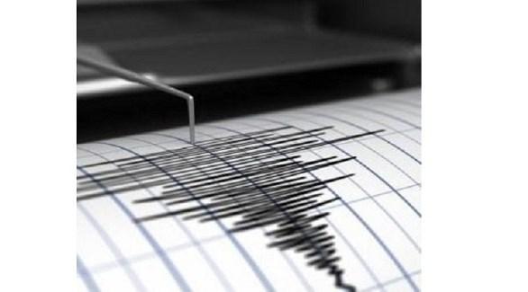 رسم لنشاط زلزالي (أرشيف)