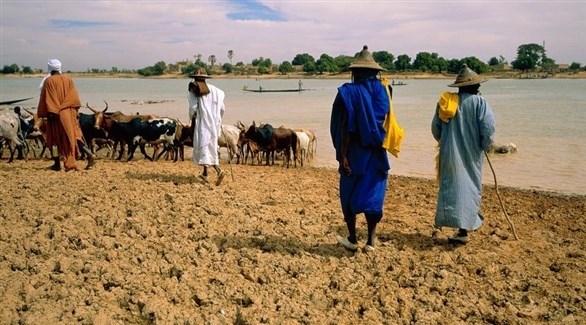 مزارعون من عرقية فلاني في مالي على ضفاف نهر باني (أرشيف)