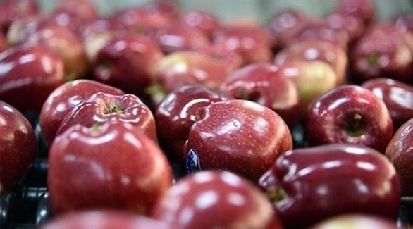 تفاح أحمر (أرشيف)