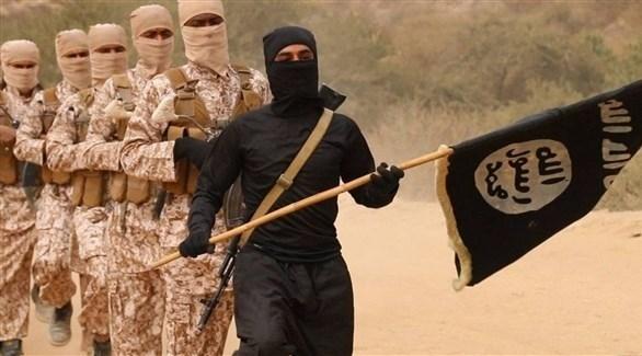 تنظيم داعش الإرهابي (أرشيف)