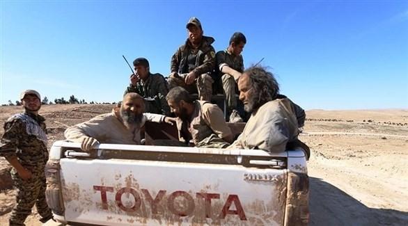 عناصر من تنظيم داعش في قبضة قوات قسد شمال سوريا (تويتر)