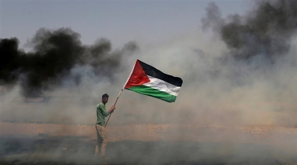 متظاهر يحمل العلم الفلسطيني (أرشيف)