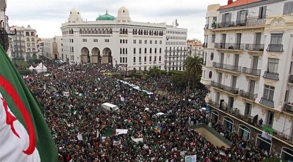 مظاهرات في الجزائر (تويتر)