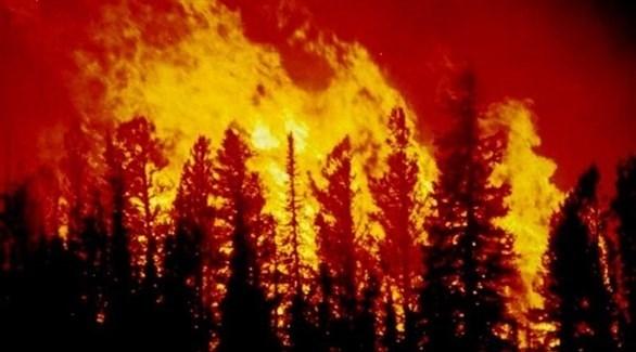 حرائق سابقة في غابات كاليفورنيا(أرشيف)