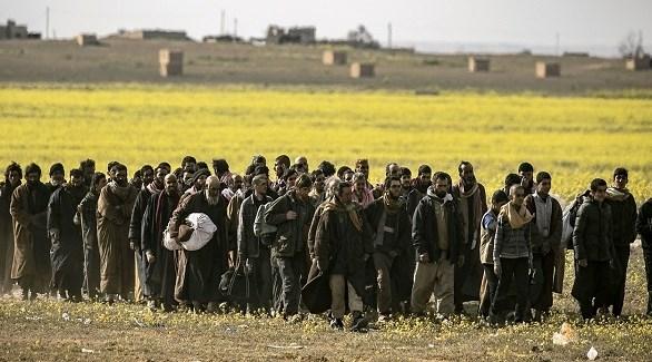 مقاتلون من داعش يستسلمون لقوات سوريا الديمقراطية في الباغوز (أرشيف)