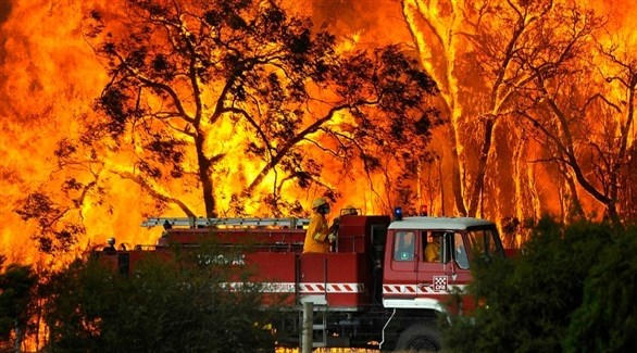 جانب من حرائق الغابات في فكتوريا الأسترالية (رويترز)