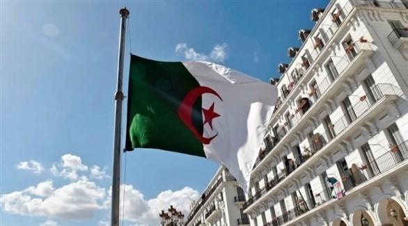 العلم الجزائري (أرشيف)
