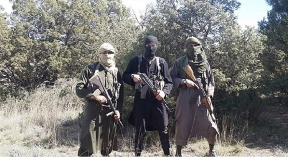 عناصر داعشية في الجبال التونسية (أرشيف)