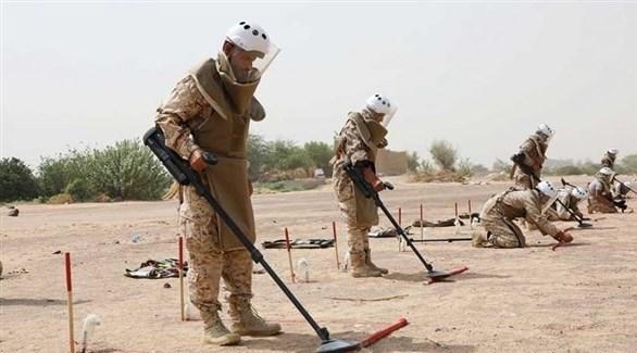 الجيش اليمني يزيل ألغاماً زرعتها ميليشيا الحوثي الإيرانية (أرشيف)
