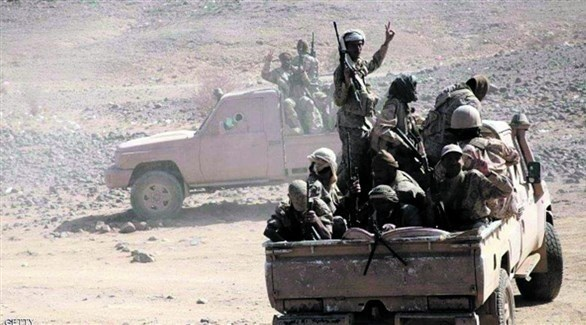 مقاتلون من الجيش اليمني في تعز (أرشيف)