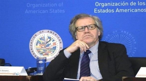 الأمين العام لمنظمة الدول الأمريكية، لويس ألماغرو (أرشيف)
