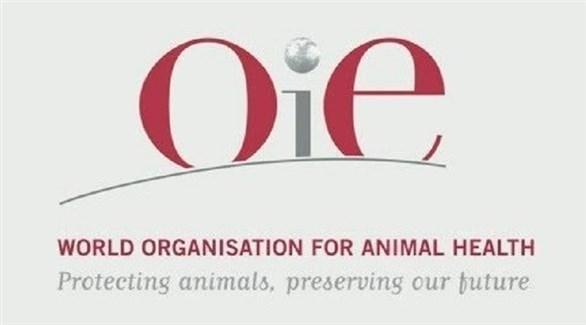 المنظمة العالمية لصحة الحيوان (أرشيف)