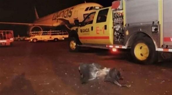 جانب من الأضرار التي لحقت بالمطار السعودي