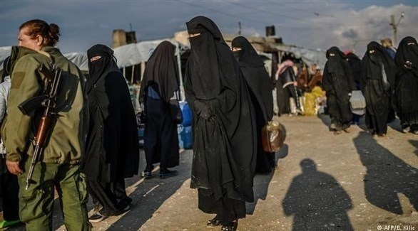 داعشيات في مخيم الهول بسوريا (أرشيف)