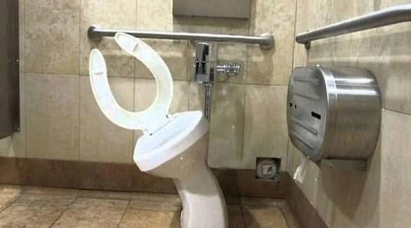 أغرب تصاميم المراحيض العالم 2019103151524627D5.j
