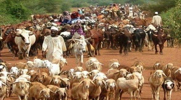 رُعاة من قبيلة المسيرية السودانية (أرشيف)