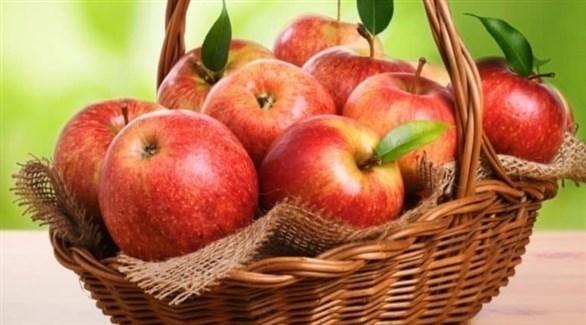 التفاح يقوّي المناعة ويحسن الهضم (تعبيرية)