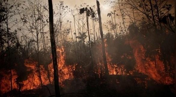 حرائق الأمازون في البرازيل (أرشيف)