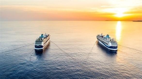 سفن شركة ميريلا السياحية (ميرور)