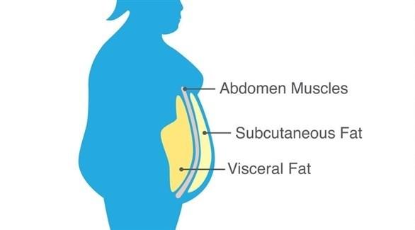 تقع الدهون الحشوية أسفل البطن (تعبيرية)