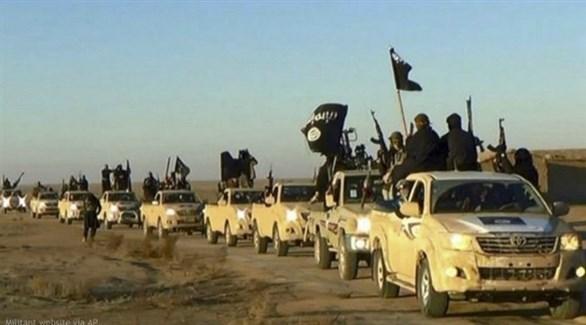 تنظيم داعش الإرهابي في سوريا (أ{شيف)