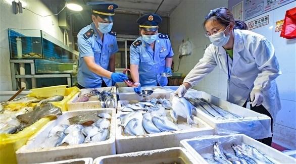 معاينة السمك في الصين (أرشيف)